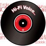 Hi-Fi Voice Produkt roku 2013